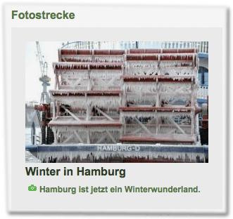 Fotostrecke: Winter in Hamburg. Hamburg ist jetzt ein Winterwunderland.