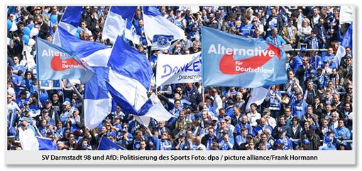 Screenshot jugenfreheit.de - Das Foto zeigt die Fankurve des SV Darmstadt 98, die verschiedene blaue und blau-weiße Fahnen schwenken, darunter zwei große AfD-Fahnen.