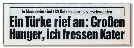 In Mannheim sind 180 Katzen spurlos verschwunden - Ein Türke rief an: Großen Hunger, ich fressen Kater
