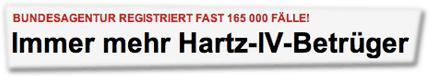 Bundesagentur registriert fast 165 000 Fälle! - Immer mehr Hartz-IV-Betrüger