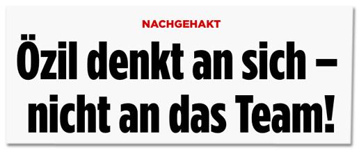 Screenshot Bild.de - Nachgehakt - Özil denkt an sich, nicht an das Team!