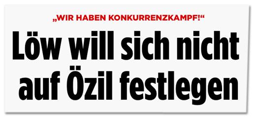 Screenshot Bild.de - Wir haben Konkurrenzkampf - Löw will sich nicht auf Özil festlegen