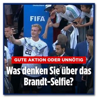 Screenshot Bild.de - Gute Aktion oder unnötig - Was denke Sie über das Brandt-Selfie