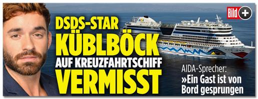 Screenshot Bild.de - DSDS-Star Daniel Küblböck auf Kreuzfahrtschiff vermisst