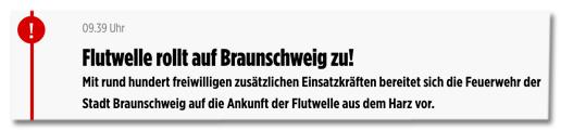 Ausriss Bild.de - Flutwelle rollt auf Braunschweig zu! Mit rund hundert freiwilligen zusätzlichen Einsatzkräften bereitet sich die Feuerwehr der Stadt Braunschweig auf die Ankunft der Flutwelle aus dem Harz vor.