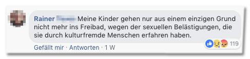 Screenshot eines Facebook-Kommentars - Meine Kinder gehen nur aus einem einzigen Grund nicht mehr ins Freibad, wegen der sexuellen Belästigungen, die sie durch kulturfremde Menschen erfahren haben.