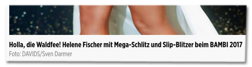 Screenshot Bild.de - Holla, die Waldfee! Helene Fischer mit Mega-Schlitz und Slip-Blitzer beim Bambi 2017