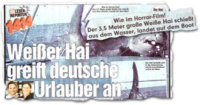 """""""Weißer Hai greift deutsche Urlauber an"""""""