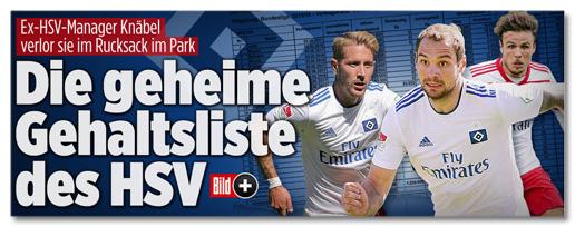 Screenshot Bild.de - Ex-HSV-Manager Knäbel verlor sie im Rucksack im Park - Die geheime Gehaltsliste des HSV