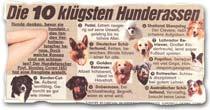 """""""Die 10 klügsten Hunderassen"""""""