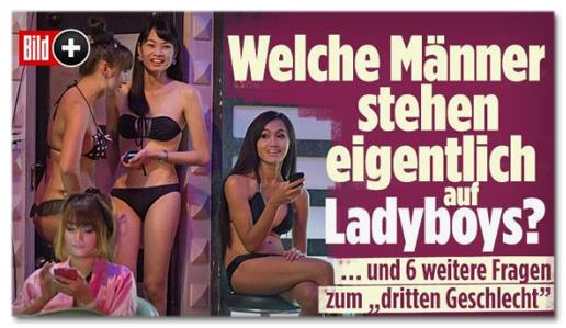 Screenshot Bild.de - Welche Männer stehen eigentlich auf Ladyboys? Und sechs weitere Fragen zum dritten Geschlecht