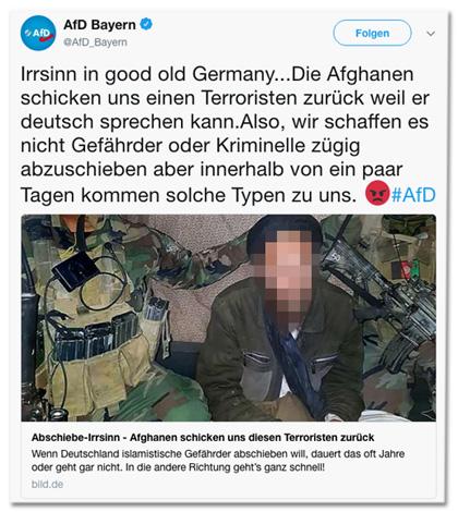 Screenshot eines Tweets der AfD Bayern mit Link zum Bild.de-Artikel