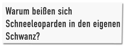Screenshot jetzt.de - Warum beißen sich Schneeleoparden in den Schwanz?