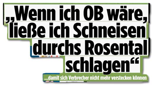 Ausriss Bild-Zeitung - Wenn ich OB wäre, ließe ich Schneisen durchs Rosental schlage