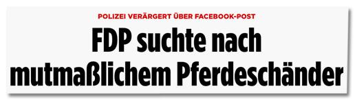 Screenshot Bild.de - Polizei verärgert über Facebook-Post - FDP suchte nach mutmaßlichem Pferdeschänder