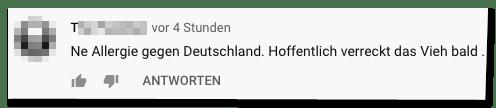 Kommentar auf der Bild-Youtube-Seite - Ne Allergie gegen Deutschland. Hoffentlich verreckt das Vieh bald.