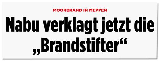 Screenshot Bild.de - Moorbrand in Meppen - Nabu verklagt jetzt die Brandstifter