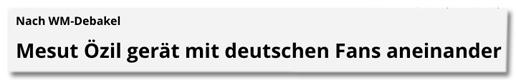 Screenshot Focus Online - Nach WM-Debakel - Mesut Özil gerät mit deutschen Fans aneinander