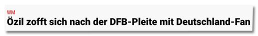 Screenshot Reviersport.de - Özil zofft sich nach der DFB-Pleite mit Deutschland-Fan