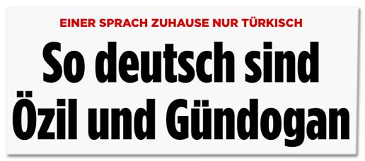 Screenshot Bild.de - Einer sprach zu Hause nur Türkisch - So deutsch sind Özil und Gündogan