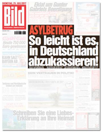 Ausriss Bild-Zeitung - Asylbetrug - So leicht ist es, in Deutschland abzukassieren