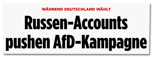 Screenshot Bild.de - Während Deutschland wählt - Russen-Accounts pushen AfD-Kampagne