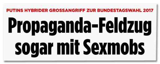 Screenshot Bild.de - Putins hybrider Großangriff zur Bundestagswahl 2017 - Propaganda-Feldzug sogar mit Sexmobs