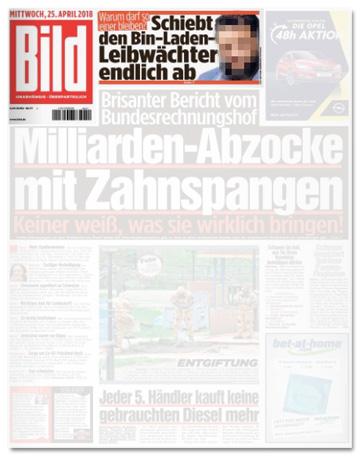 Ausriss Bild-Zeitung - Schiebt den Bin-Laden-Leibwächter endlich ab