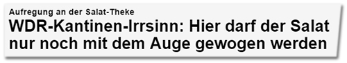 """Focus Online"": ""WDR-Kantinen-Irrsinn"""