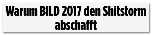 Screenshot Bild.de - Warum Bild 2017 den Shitstorm abschafft
