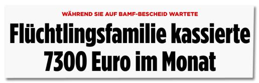 Screenshot Bild.de - Flüchtlingsfamilie kassierte 7300 Euro im Monat