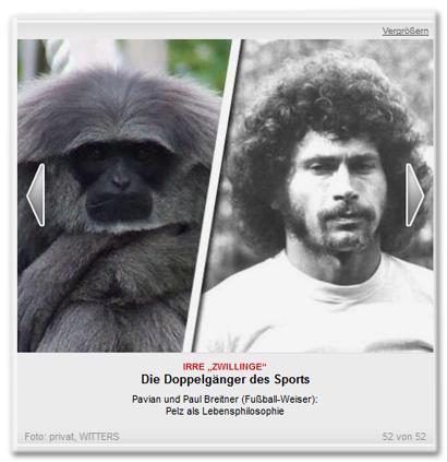 Die Doppelgänger des Sports - Pavian und Paul Breitner (Fußball-Weiser)