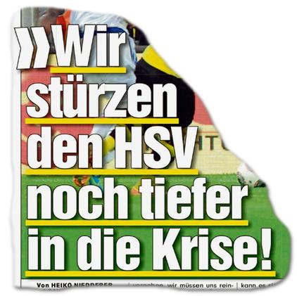 """""""Wir stürzen den HSV noch tiefer in die Krise!"""