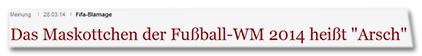 """Fifa-Blamage - Das Maskottchen der Fußball-WM 2014 heißt """"Arsch"""""""