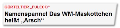 """Gürteltier """"Fuleco"""" - Namenspanne! Das WM-Maskottchen heißt """"Arsch"""""""