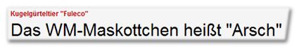 """Kugelgürteltier """"Fuleco"""" - Das WM-Maskottchen heißt """"Arsch"""""""