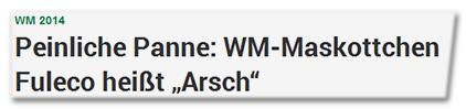 """WM 2014 - Peinliche Panne: WM-Maskottchen Fuleco heißt """"Arsch"""""""