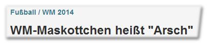 """Fußball / WM 2014 - WM-Maskottchen heißt """"Arsch"""""""