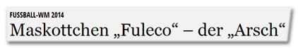 """Fussball-WM 2014 - Maskottchen """"Fuleco"""" – der """"Arsch"""""""
