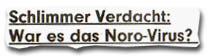 """""""Schlimmer Verdacht: War es das Noro-Virus?"""""""