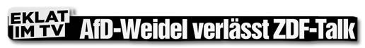 Ausriss Bild-Zeitung - Eklat im TV - AfD-Weidel verlässt ZDF-Talk
