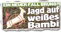 """""""Jagd auf weißes Bambi"""""""