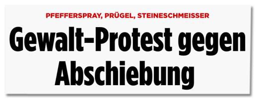 Screenshot Bild.de - Pfefferspray, Prügel, Steineschmeisser - Gewalt-Protest gegen Abschiebung
